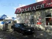 ПРОДАМ срочно Магазин-Кафе БАР в самом центре города!!!